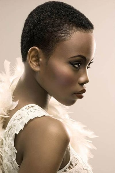 Elegant pin on hair Short Afro For African American Women Ideas