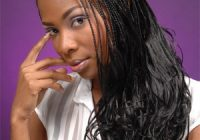 Trend micro braids twisted hairstyles human braiding hair micro Braids With Human Hair Styles Inspirations